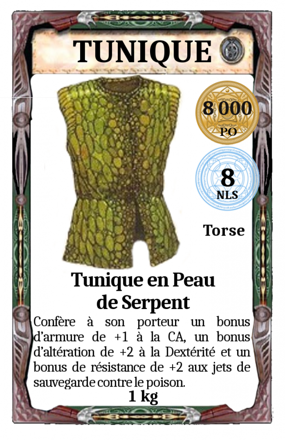 Tunique Peau de serpent